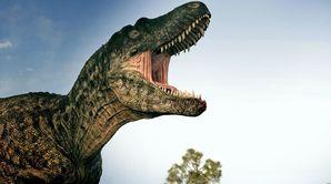 Un tyrannosaure dans la basse-cour