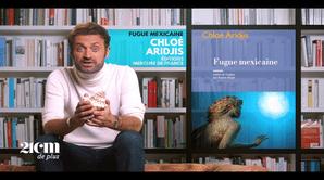 """""""Fugue mexicaine"""" - Chloé Aridjis - 21 cm de +"""