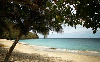 Les petites perles des Caraïbes