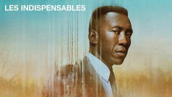 Les indispensables - la sélection de Charlotte Blum - True Detective saison 3