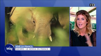 Safaris : le Kenya en France !