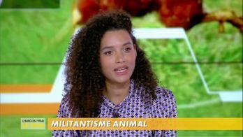 Le militantisme animal sur internet