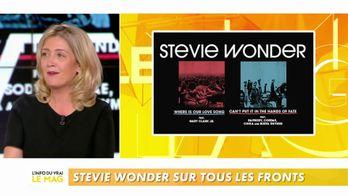 Emilie Mazoyer : le retour musical de Stevie Wonder