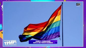 Agnès C, ancienne membre de LREM condamnée suite à ses tweets homophobes