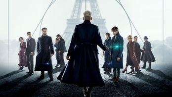 3 raisons de regarder Les Animaux Fantastiques : Les Crimes de Grindelwald sur CANAL+