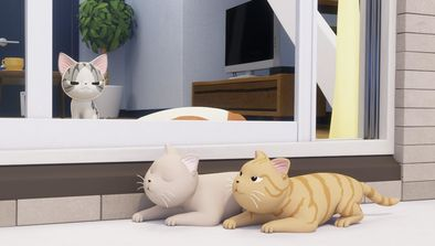 Chi, Bubulle et les chat-pardeurs