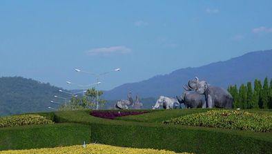 Chiang Mai, design de la nature