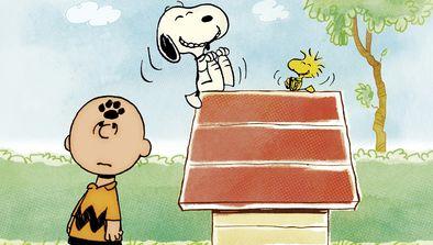 Ça va aller Charlie Brown