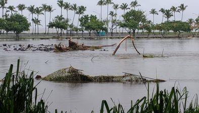 Hurricane Lane, Hawaii, USA and Typhoon Jebi, Mainland Japan