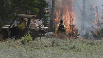 Incendies de forêt, bataille pour l'eau et frontière mexicaine