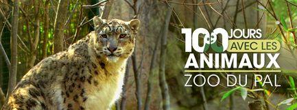 100 jours avec les animaux du Pal : le plus grand zoo d'Auvergne - Ép 2