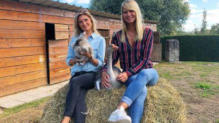 Animaux à adopter : nouvelle famille pour une nouvelle vie - S2 - Ép 9