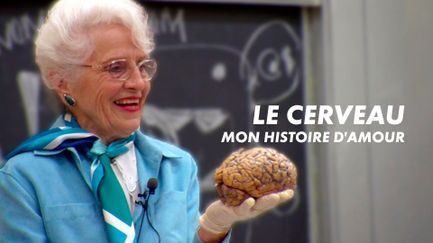 Le cerveau : mon histoire d'amour