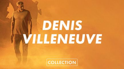 Collection Denis Villeneuve