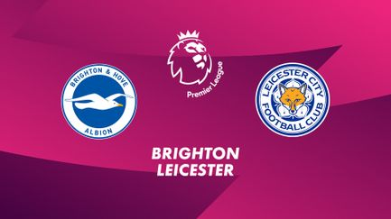 Brighton & Hove Albion / Leicester