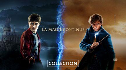 La magie continue