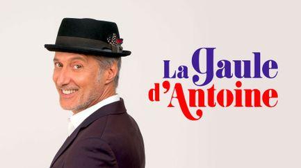 La Gaule d'Antoine