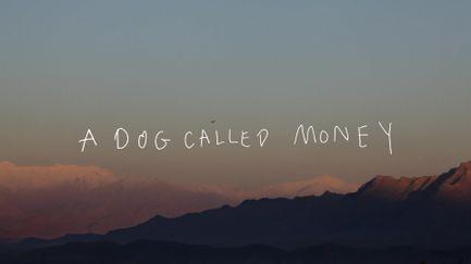 PJ Harvey. A Dog Called Money