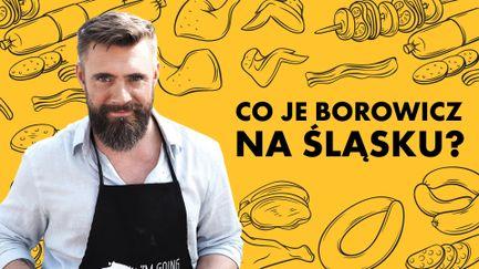 Co je Borowicz na Śląsku?