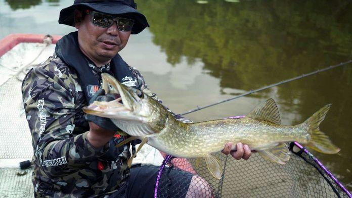 La pêche en surface