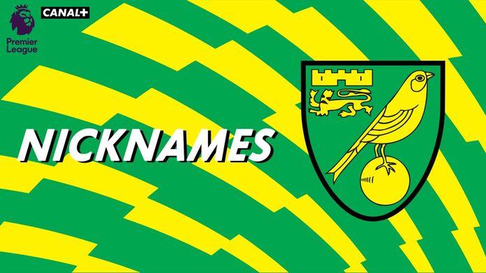 """Les """"Canaries"""" de Norwich City"""