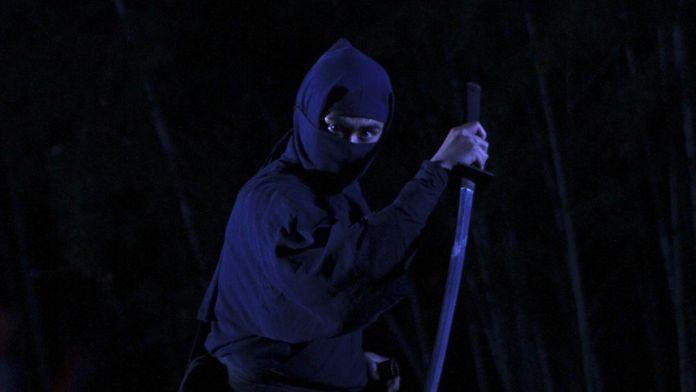 Les guerriers ninja