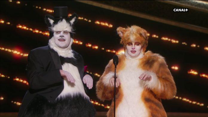 Quand deux chats remettent un prix aux Oscars - Oscars 2020