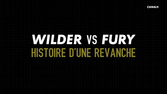 Wilder vs Fury - 14 mois après le premier combat