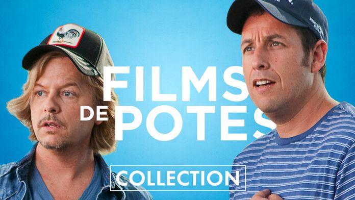 Films de potes