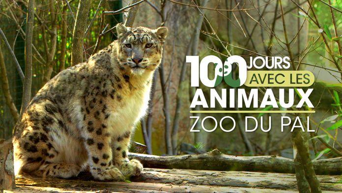 100 jours avec les animaux du Pal : le plus grand zoo d'Auvergne