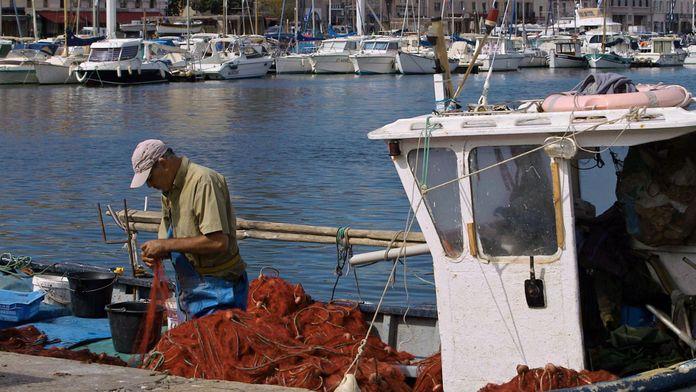 Vents contraires, une histoire de la pêche française