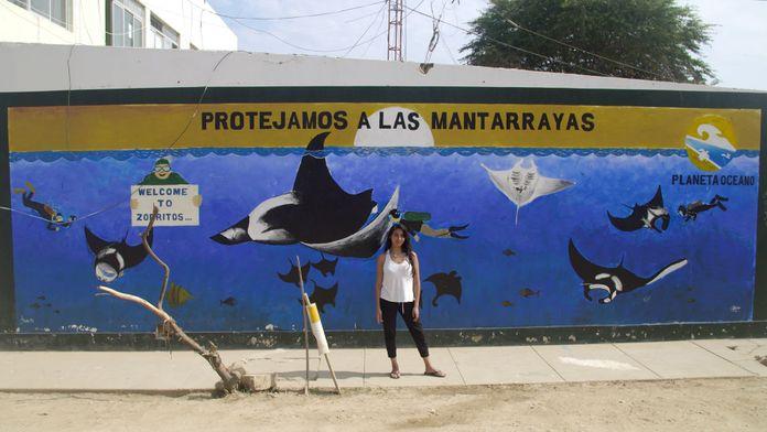 La raie manta géante au Pérou