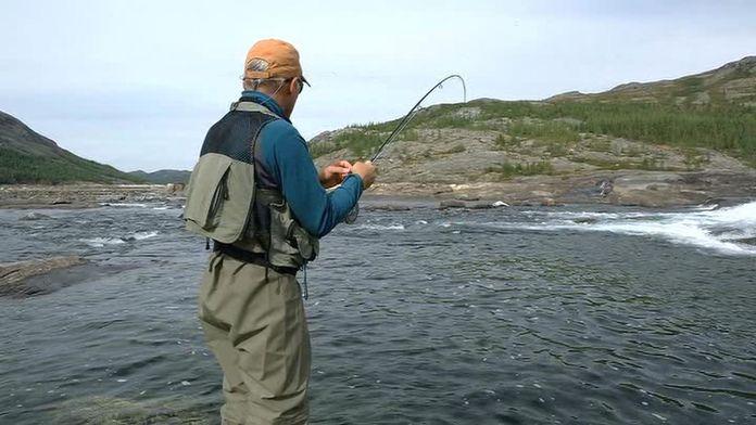 Les ombles arctiques du Nunavik