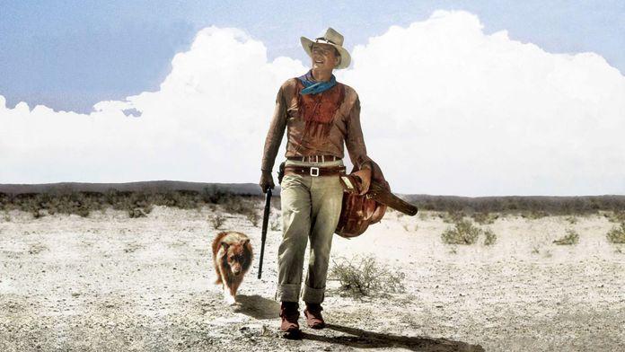 Hondo, l'homme du désert