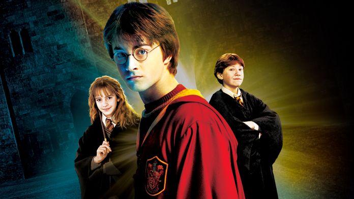 Harry Potter et la chambre des secrets (version longue)