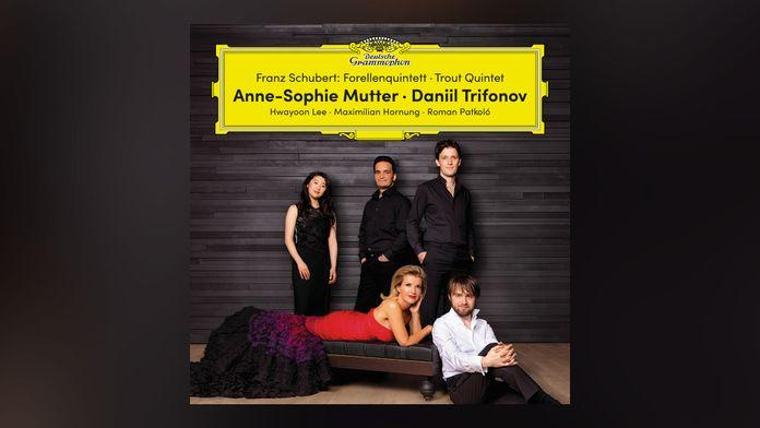 Franz Schubert - Le Chant du cygne (pour violon et piano)