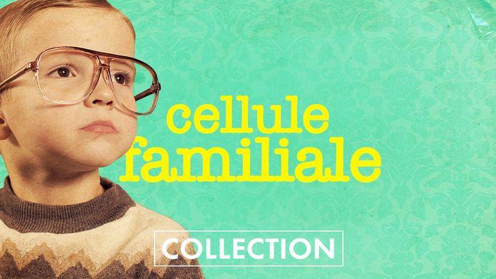 Cellule familiale