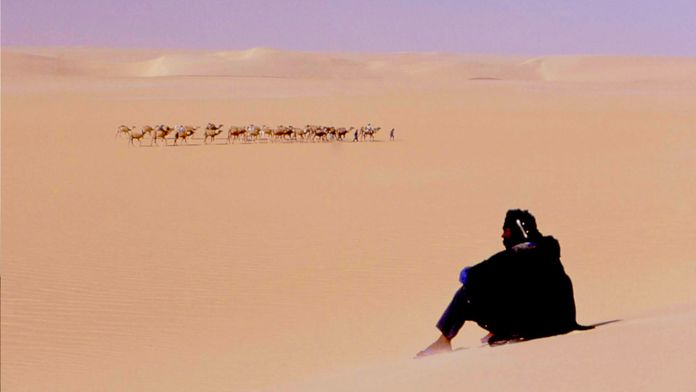 Touareg : les seigneurs des dunes