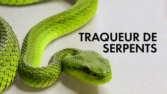 Traqueur de serpents