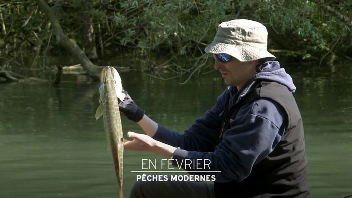 Pêches Modernes