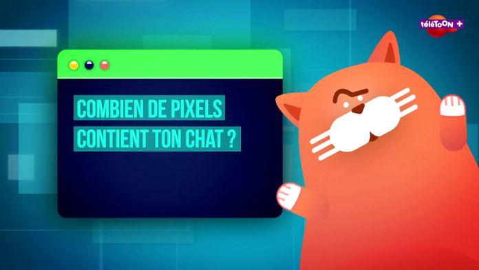 Combien de pixels contient ton chat ?