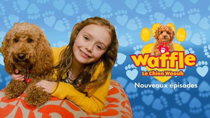 Waffle, le chien waouh