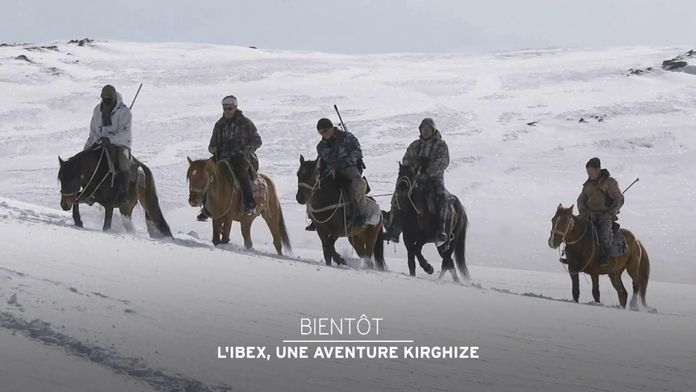 L'Ibex, une aventure kirghize