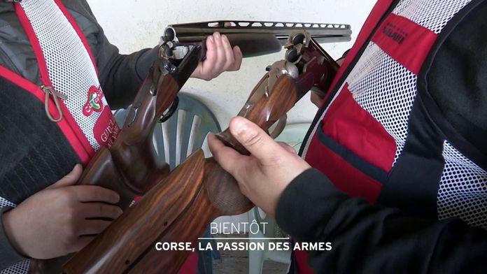 Corse, la passion des armes