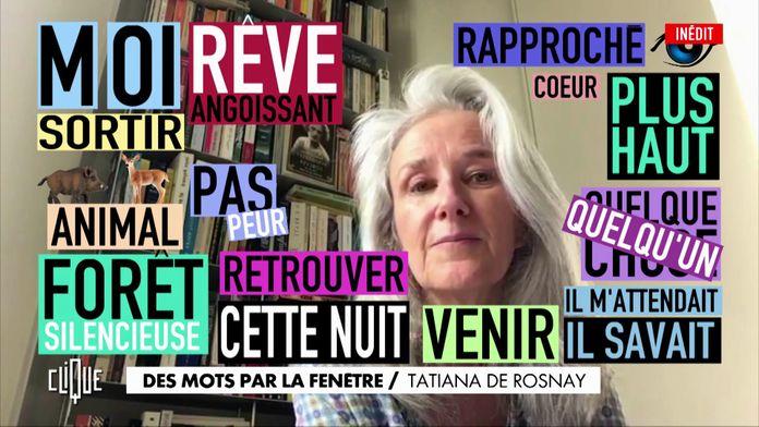 Des mots par la fenêtre : Tatiana De Rosnay