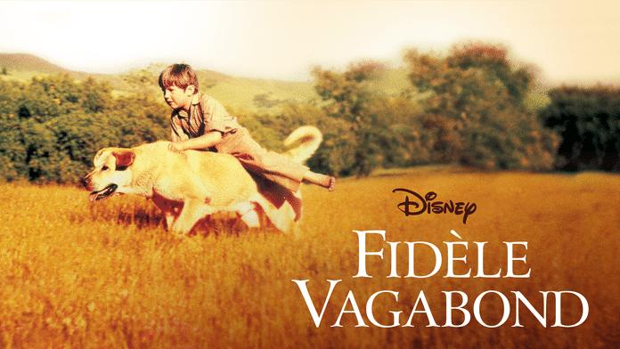 Fidèle vagabond
