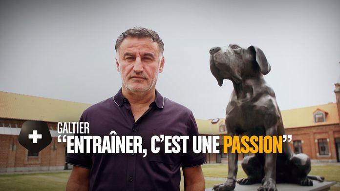 """Christophe Galtier : """"Entraîner, c'est une passion"""" : Canal Football Club"""