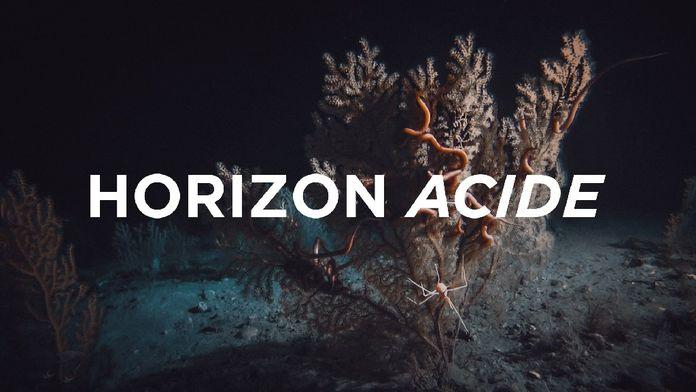 Horizon acide