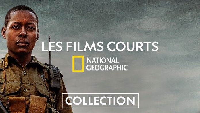 National Geographic films courts