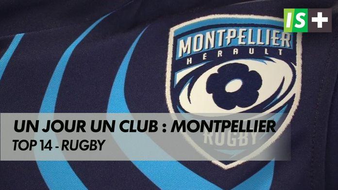 """""""Un jour, un club"""" : Montpellier : Rugby"""